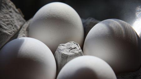 Eggs-in-carton-1