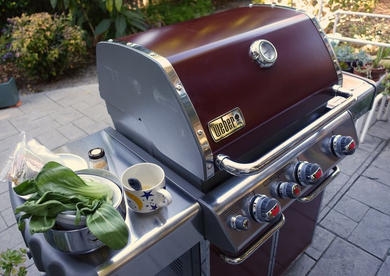 Weber-Grill-11